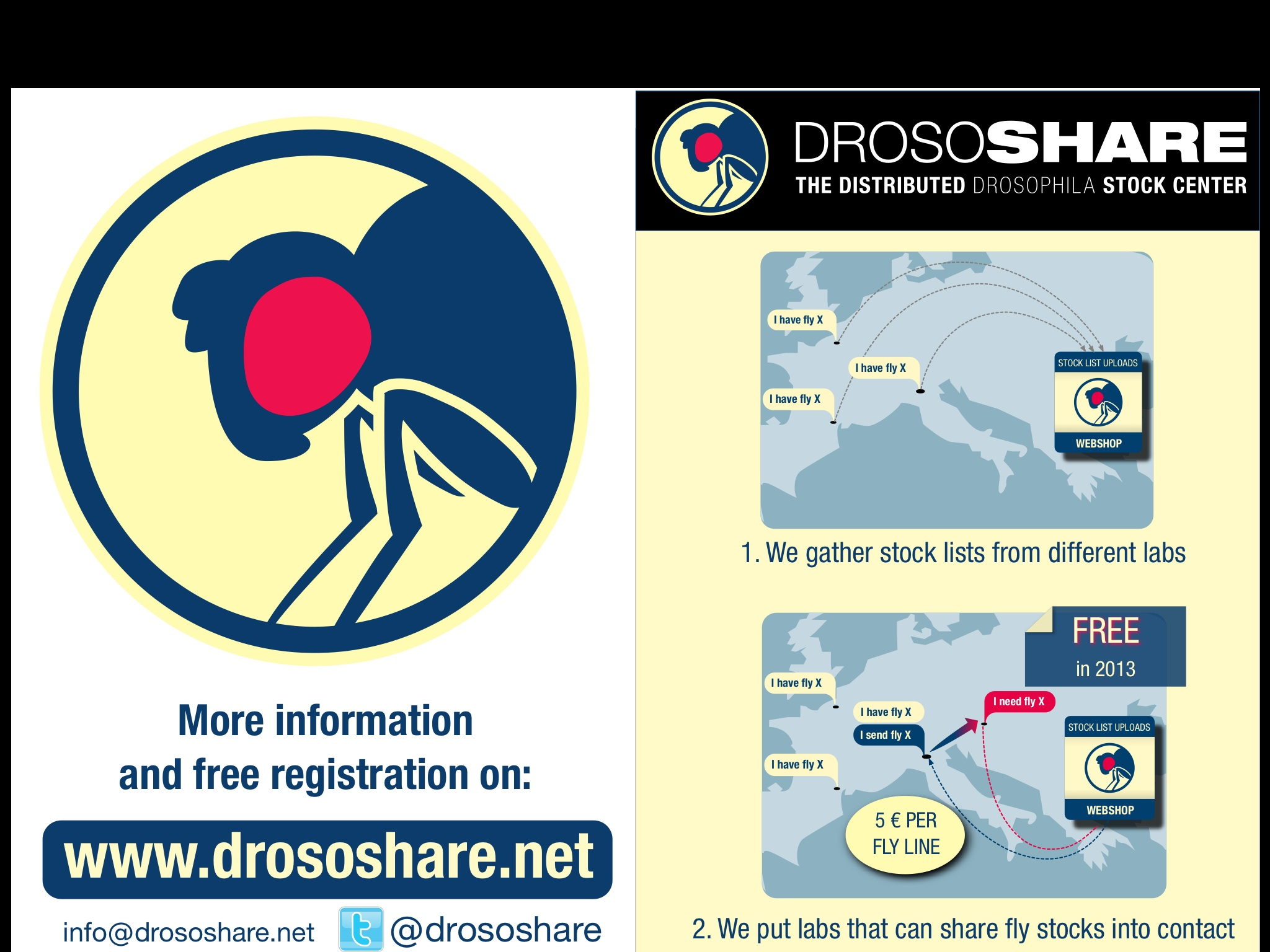 Drososhare (Source)