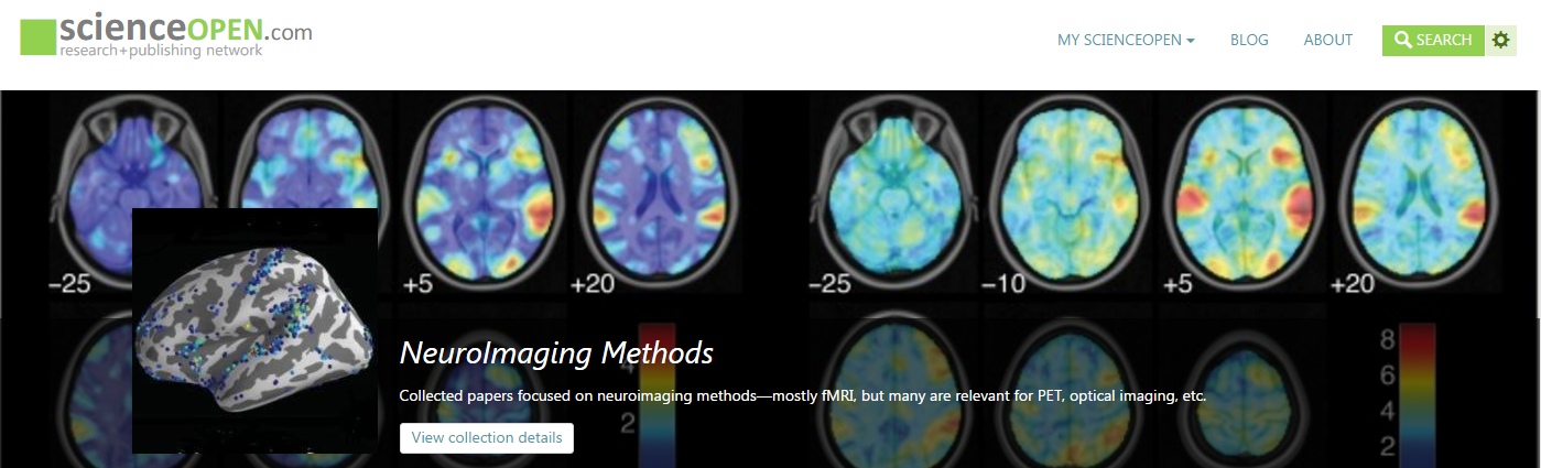 Peering into the mind of our Neuroimaging Collection Editor, Jonathan Peelle